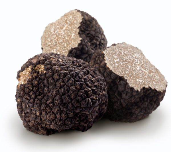 Truffle Oil - Black